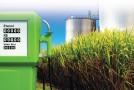 Lidera UNAM Proyecto para Obtener Nuevo Biocombustible