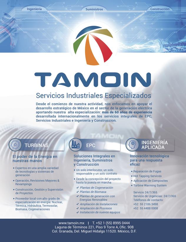 TAMOIN-anuncio